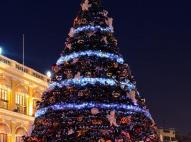 Outside Christmas Tree