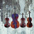 Beethoven string quartets 2