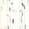 Image 10: Graphic scores