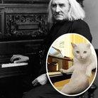 Liszt cat lookaike