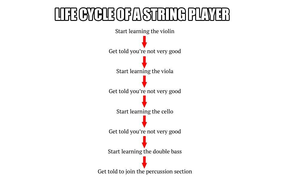 musician life processes